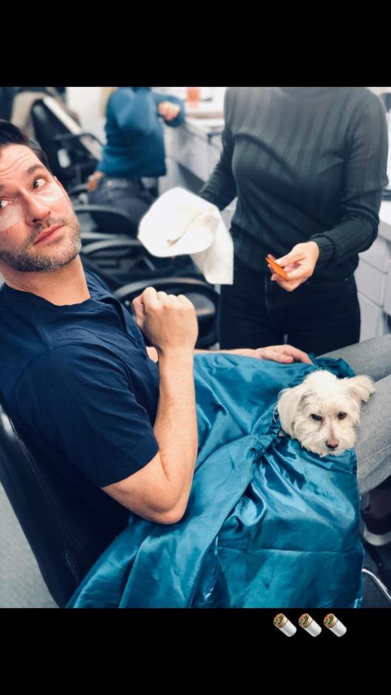 ILinst Tom Ellis Nov2018 (1).jpg
